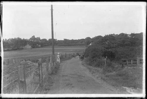 WV-NEG-150100-014: Wallasey / Bidston